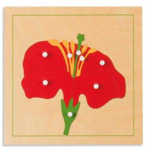 Puzzle Botánico - Flor